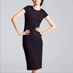 Felicity & Coco Sheath Bodycon Dress